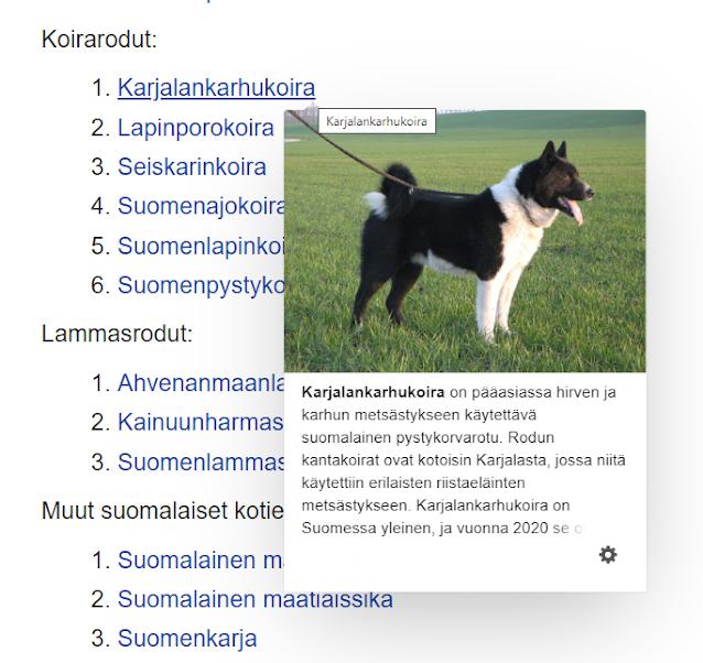 Tervetuloa Suomen suurimmalle seksideitti sivustolle!