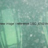 DSC_4742.thumb.jpg