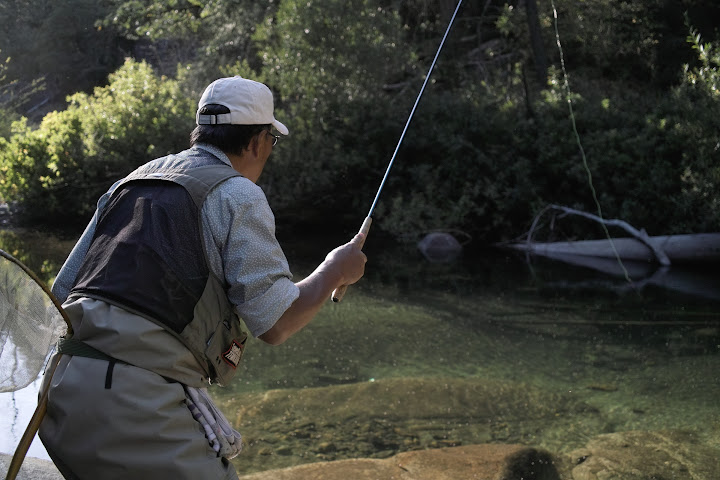 Dr. Ishigaki fishing for trout with tenkara in California