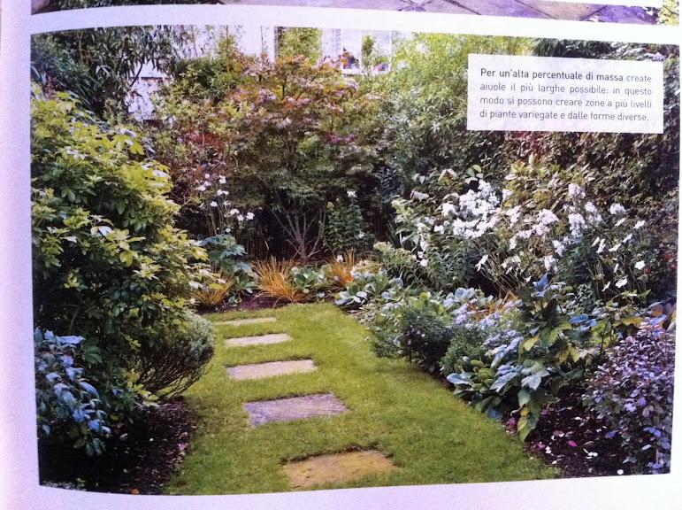 un quadrato di giardino: forum di giardinaggio - un quadrato di ... - Piccolo Giardino Quadrato