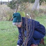 Hammo Fall Planting - Jim Murtagh - BC3G2542.jpg