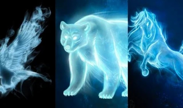 Harry Potter: 4 animais patronos que câncer provavelmente teria