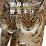 世界の野生ネコ's profile photo