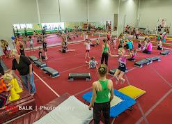 Han Balk Het Grote Gymfeest 20141018-0509.jpg