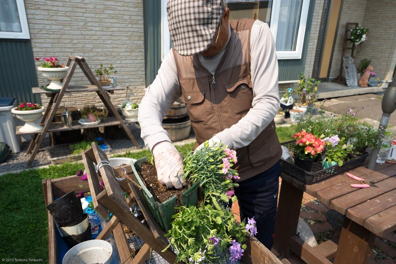 8.用土や水苔を足しながら、下の段から上へと苗を植え重ねていく