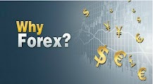 Why Most of the Traders Invest in Forex Market ?