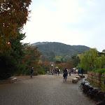 IMG_4651.jpg