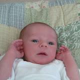 Meet Marshall! - IMG_0331.JPG