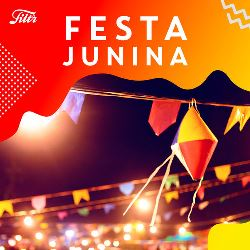 CD Festa Junina São João 2019 - Torrent download