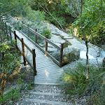 Bridge over Little Flaggy Creek on the Yuelarbah Walking Track (339343)