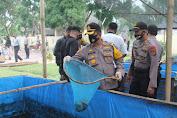 Tingkatkan Ketahanan Pangan, Kapolres Batu Bara Panen Ikan Lele