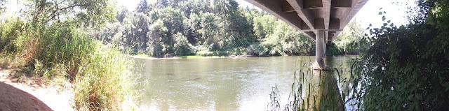 Skookumchuck River 2012 - DSCF1827.JPG