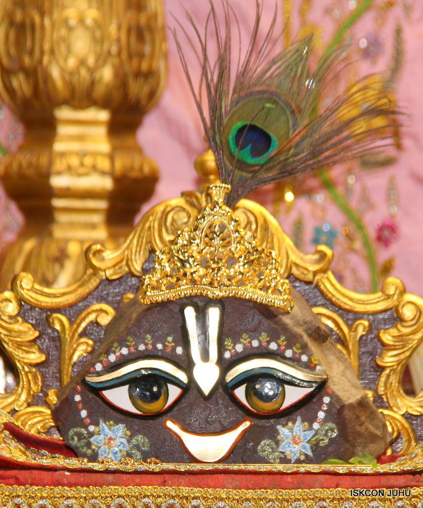 ISKCON Juhu Mangal Deity Darshan on 18th Jan 2017 (20)