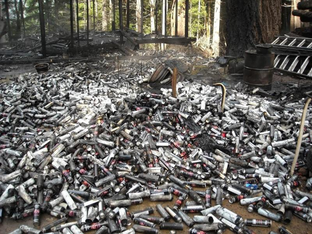 Thousands of used butane cans used to process concentrated marijuana dumped in the forest in Humboldt County, California are pictured in this undated handout photo obtained by Reuters, 25 July 2017. Photo: California Department of Fish and Wildlife / Reuters