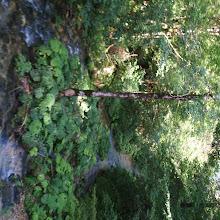 Taborjenje, Nadiža 2007 - P0127633.JPG