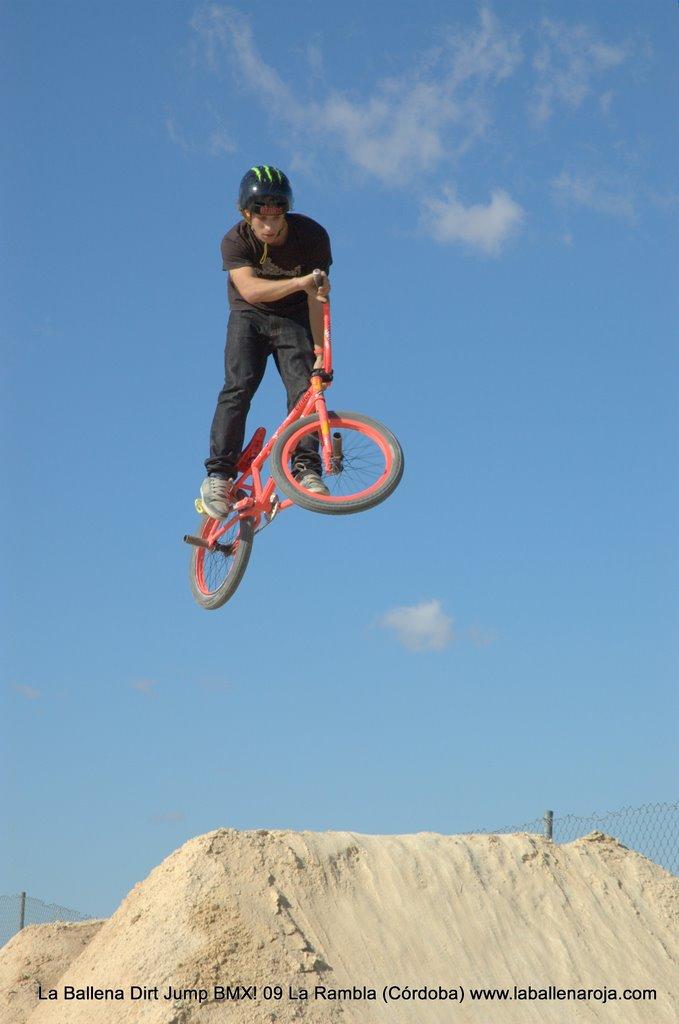 Ballena Dirt Jump BMX 2009 - BMX_09_0024.jpg
