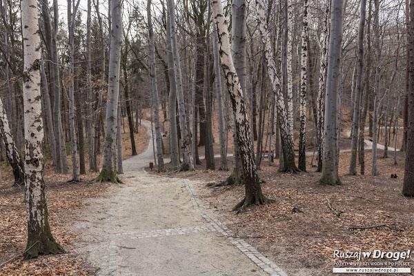 Trasy spacerowe po Parku Miejskim w Wałbrzychu