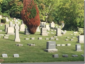 Photograph of a cemetery by the Ancestry Insider