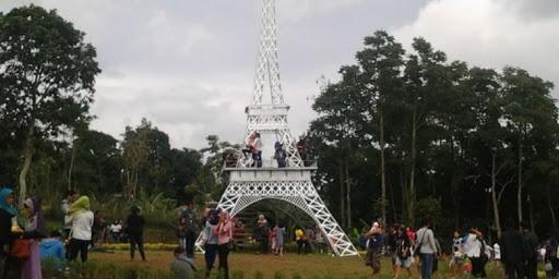 landmark menara eiffel taman bunga celosia