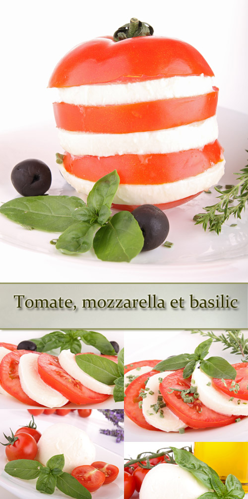 Stock Photo: Tomatoes, mozzarella and basil leaves