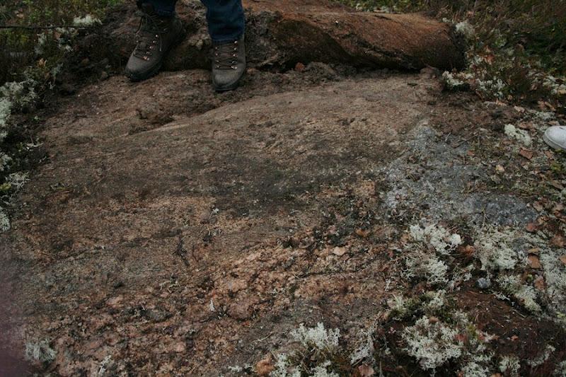 Kallioperägeologian kenttäkurssi, kevät 2012 - Kallioper%25C3%25A4kenttis%2B048.JPG