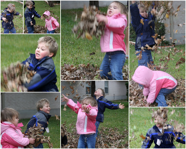 Simple joys of tossing and jumping in leaves.