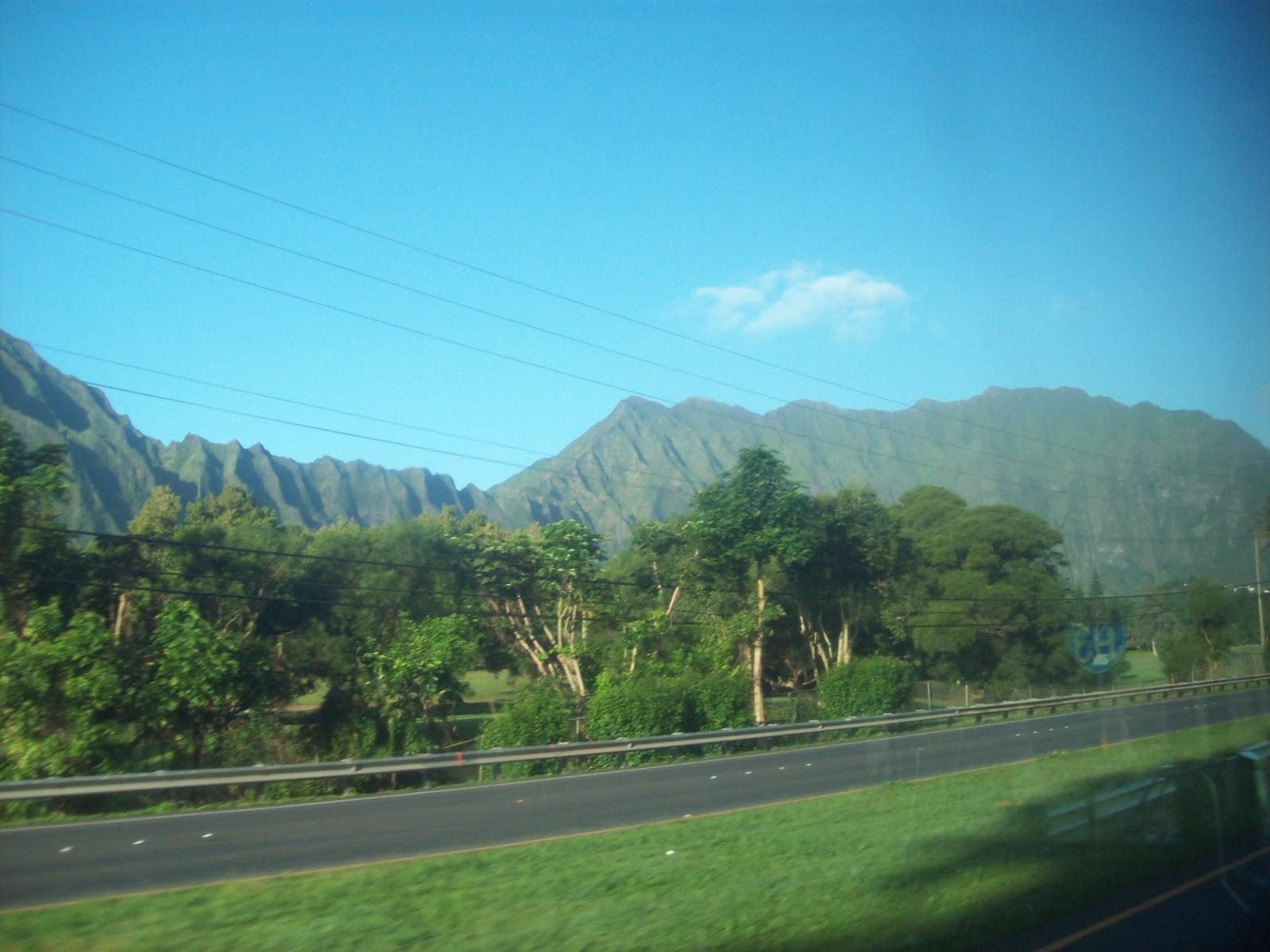 Hawaii Day 3 - 114_1015.JPG