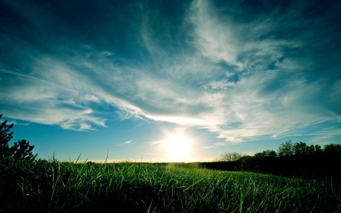 Grassy Sunset by mattyv8