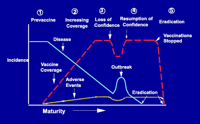 Evolution of a vaccine program. Chen RT, Orenstein WA. 'Epidemiologic methods in immunization programs', Epidemiol Rev. 1996;18(2):102. Copyright © 1996 by the Oxford University Press. Graphic: Chen and Orenstein, 1996 / Epidemiologic Reviews