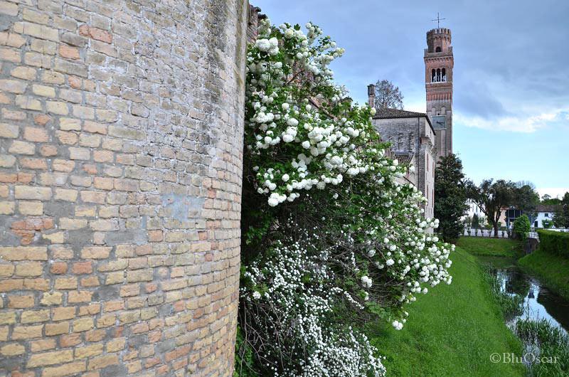 Castello di Roncade 46
