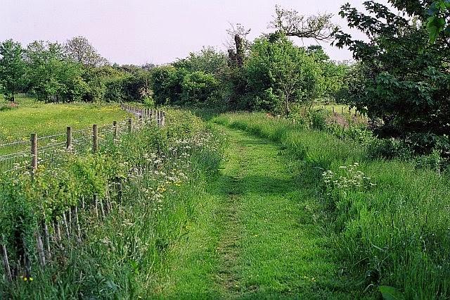 Grassfield Footpath - Hedge Planting - 9663928510233_0_BG.jpg