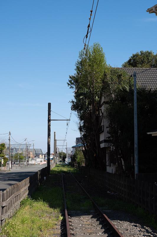 190413 覆っていた枝の切られた廃線跡