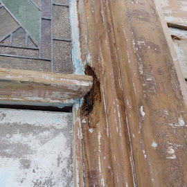 Paint stripping and building repairs