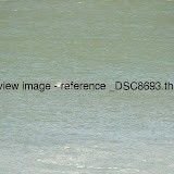 _DSC8693.thumb.jpg
