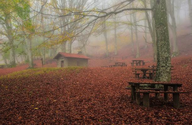 Foschia d'autunno  di Luca160