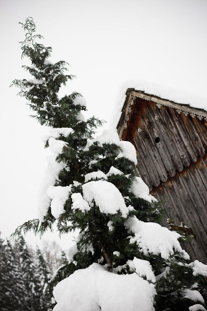 Škofja Loka under the snow - Vika-9030.jpg