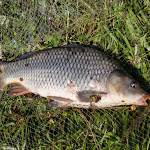 20160717_Fishing_Zhalianka_033.jpg