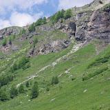 Versant au-dessus de Curtins fréquenté par P. phoebus. Val Fex, 2000 m (Engadine, Grisons, CH). 11 juillet 2013. Photo : J.-M. Gayman