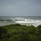 _DSC7247.thumb.jpg