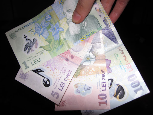 I LEI (la moneta rumena) sono bellissimi!