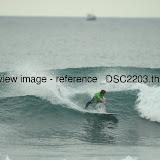 _DSC2203.thumb.jpg