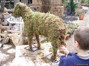 pépinière Grangier animaux végétales