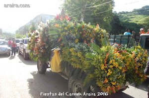 Peregrinacion Araira 2016