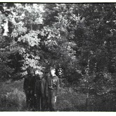 n029-021-1966-tabor-sikfokut.jpg