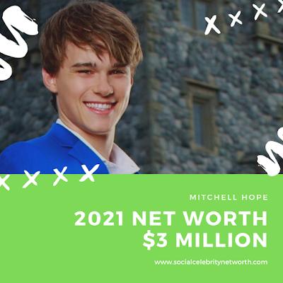 Social Celebrity Net worth | Mitchell Hope Net worth