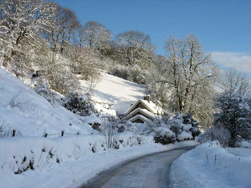 SnowTS1