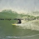 _DSC7565.thumb.jpg