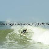 _DSC8895.thumb.jpg