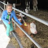 Welpen - Kinderboerderij & Crossbaan - IMG_2487.JPG