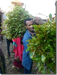 Week 2018-52 - Gard Ethiopië catmarkt